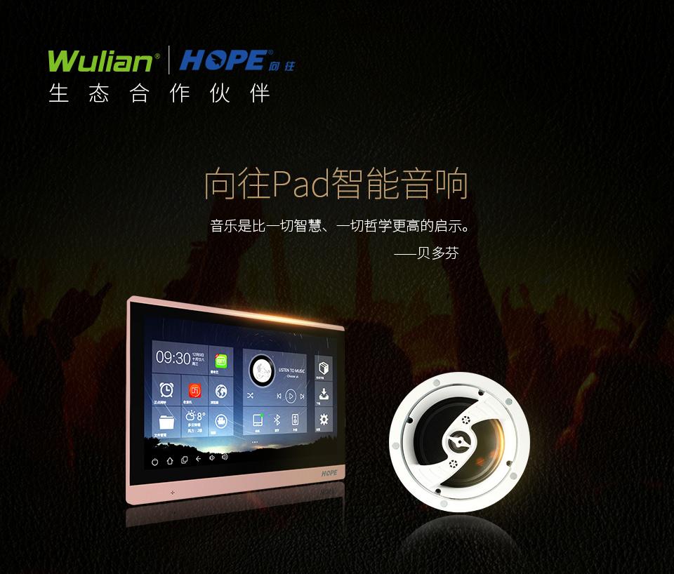 Wulian智能背景音乐系统_01.jpg